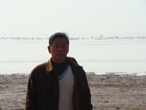 情系鄱阳湖的候鸟 (图)